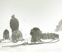 sydpol-ski_cropped_352x169